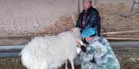 原州区2018年春季动物防疫工作措施得力进展顺利 - 农业厅