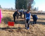 平罗县气象局积极参加全县秋冬农田水利建设义务劳动 - 气象
