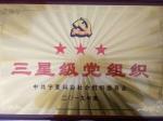 """宁夏消防协会党支部被评定为2019年度 """"3星级党支部"""" - 消防网"""